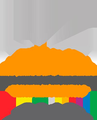 Elecciones Judiciales 2017